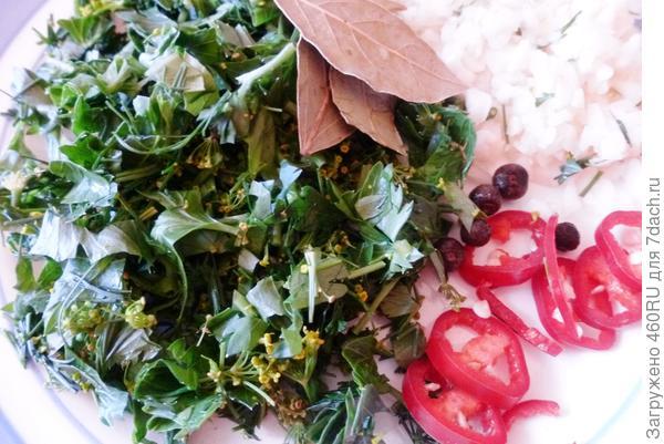Салат из огурцов на зиму без стерилизации. Пошаговый рецепт с фото