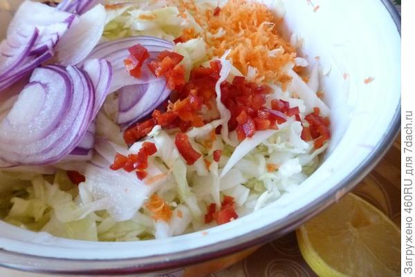 Салат из молодой капусты с мятой - пошаговый рецепт с фото