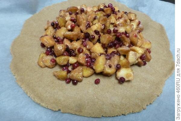 Ржаная галета с яблоками и брусникой. Рецепт приготовления с пошаговыми фотографиями