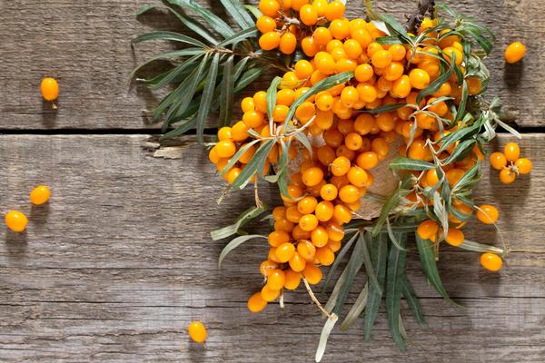 В 100 г плодов облепихи концентрация витамина С в 10 раз больше, чем в одном лимоне