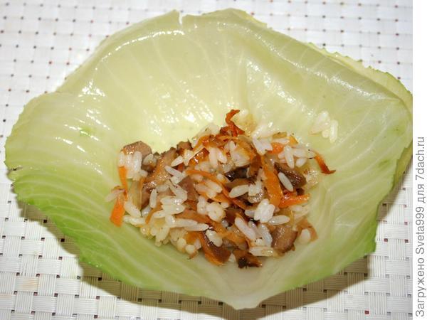 Постные голубцы с грибами - пошаговый рецепт приготовления с фото