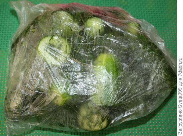 Малосольные огурцы в пакете на скорую руку - пошаговый рецепт приготовления с фото