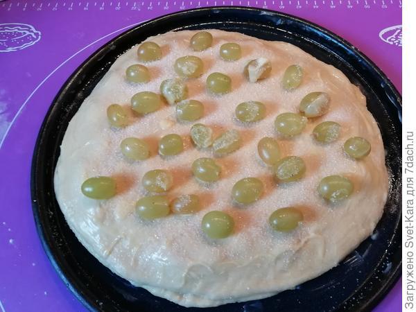 Пирог с виноградом, или Привет из Тосканы от бабушки Ромилды - пошаговый рецепт приготовления с фото