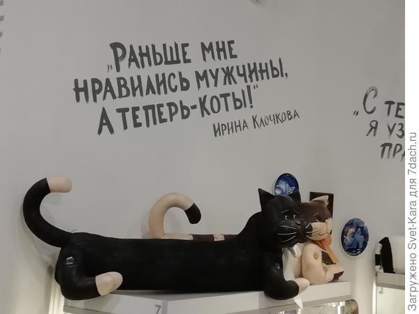 Фото из музея кошек