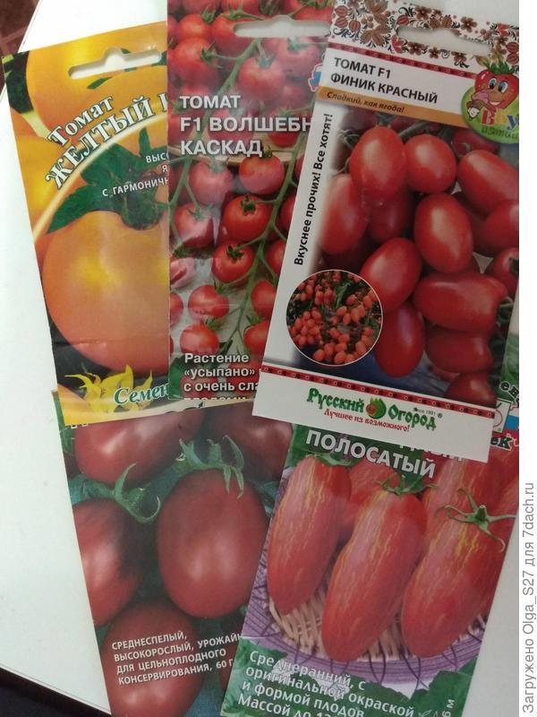 """Мои томатные """"любимчики"""". Не хватает только семян сорта Кенигсберг"""