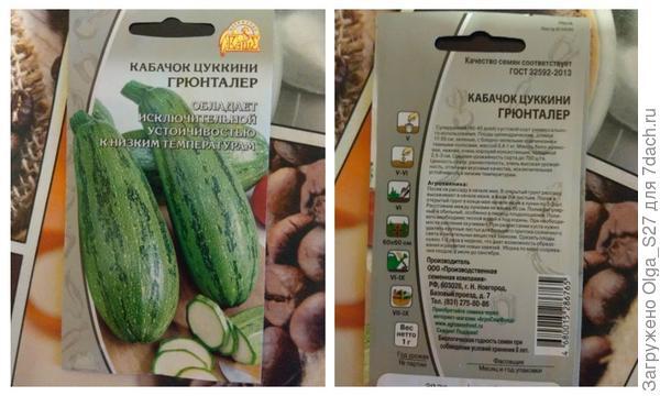 Кабачок Грюнталер - от посева до первых листочков