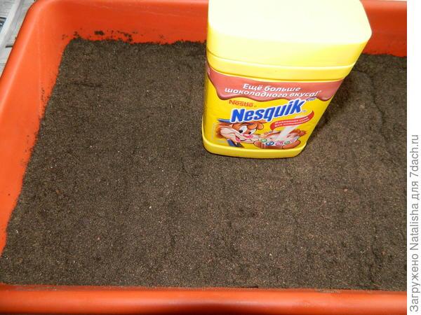 Подготовка почвогрунта к посеву.