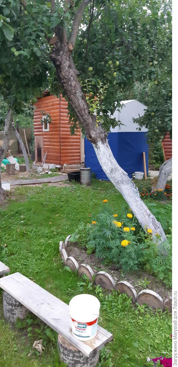 Банька и палатка)