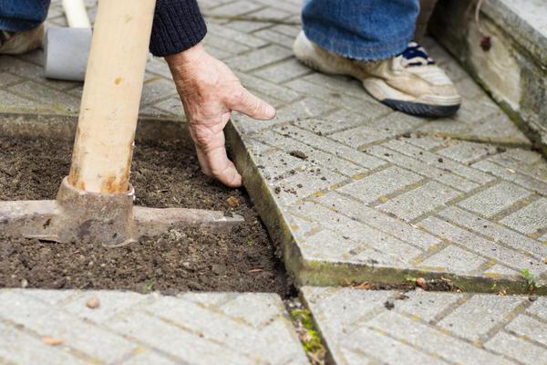Как сделать садовую дорожку без ошибок?