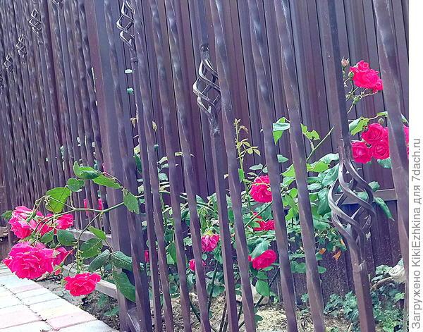 Как удобнее и практичнее подвесить садовый инвентарь?