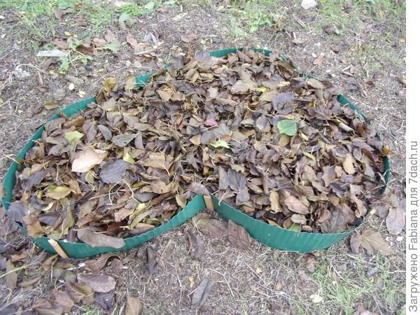 Делаем клумбу для весеннецветущих луковичных