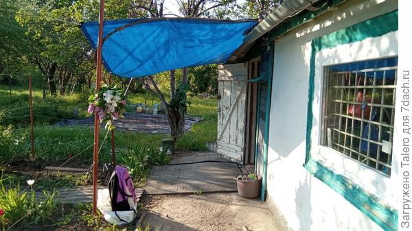 Из новинок: натянула над входом тент, теперь не страшен дождь (ха-ха, если б он ещё пошёл хоть на пару минут!). Да и солнце до вечера прикрывает