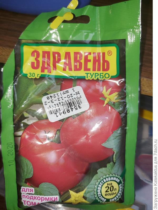 Почему появились следы на стволе томата, скручивается листва? Как помочь растениям?