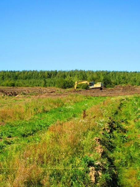 Покупайте землю — ведь её уже больше никто не производит. (Марк Твен)