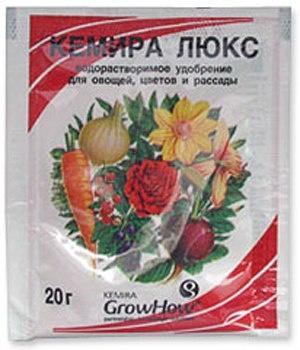 Космический эксперимент на вашем окне , выращиваем лук на гидропонике.