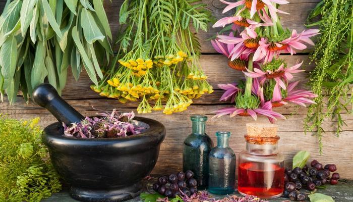 """""""От сердца, от почек"""" какой пить цветочек? Какие лекарственные травы из тех, что """"под рукой"""", вы применяете от ран, болезней или просто для укрепления здоровья ?"""