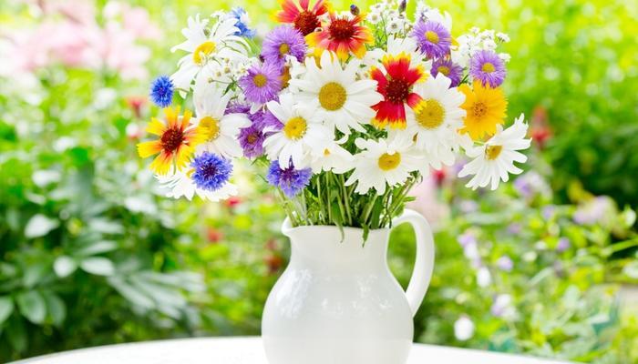 """Поздравляем победителей конкурса """"Мой сад - моя страсть""""!"""