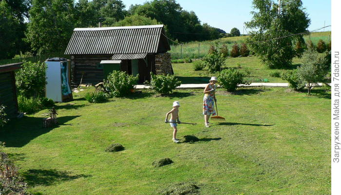 Грабли - важный садово-огородный инструмент