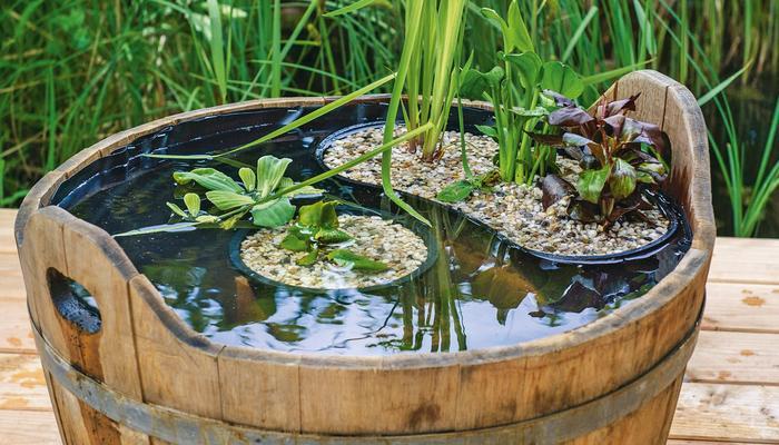 Эффектный мини-пруд из деревянной кадки: мастер-класс