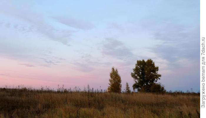 Октябрь. Посадка чеснока по лунному календарю