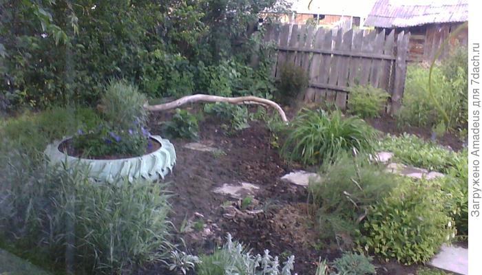 Мой сад - моя страсть