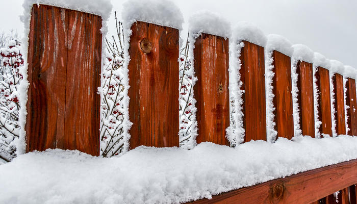 Какой забор дешевле: посчитаем вместе