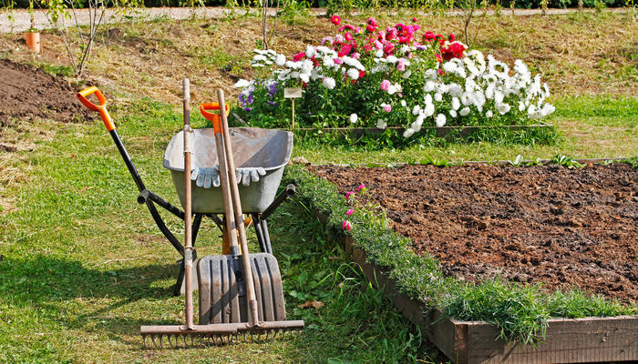 Обновки для сада в магазинах Fix Price - полезные и просто приятные