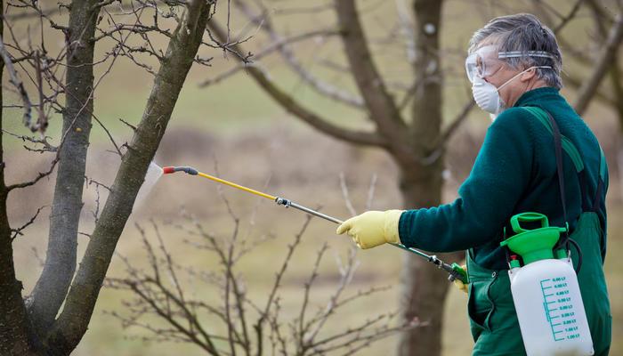 Осенняя обработка сада от вредителей (видео)