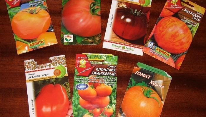 Успехи и неудачи огородного сезона 2018. Паслёновые культуры: томаты