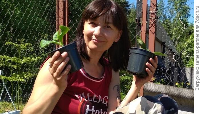 """Победитель """"Конкурса блогов"""" за июнь"""
