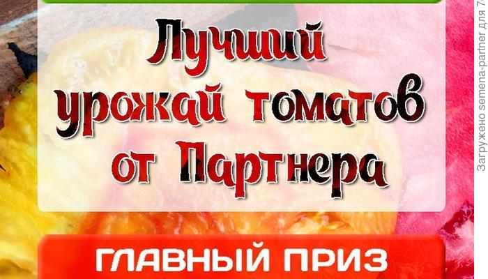 """Конкурс """"Лучший урожай томатов от ПАРТНЕРА"""". Настало время подводить итоги"""