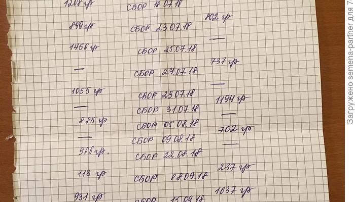 """Итоги конкурса """"Лучший урожай томатов от Партнера"""" 2018 года"""