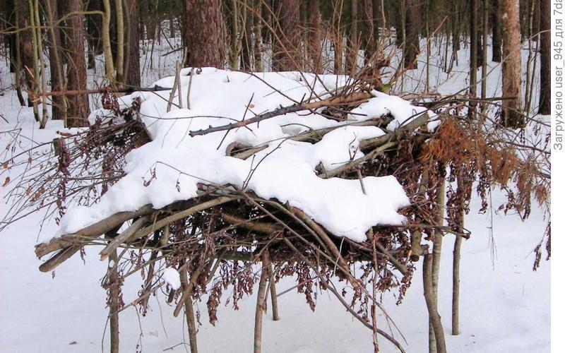 Хворост - это же мини-дрова?!))