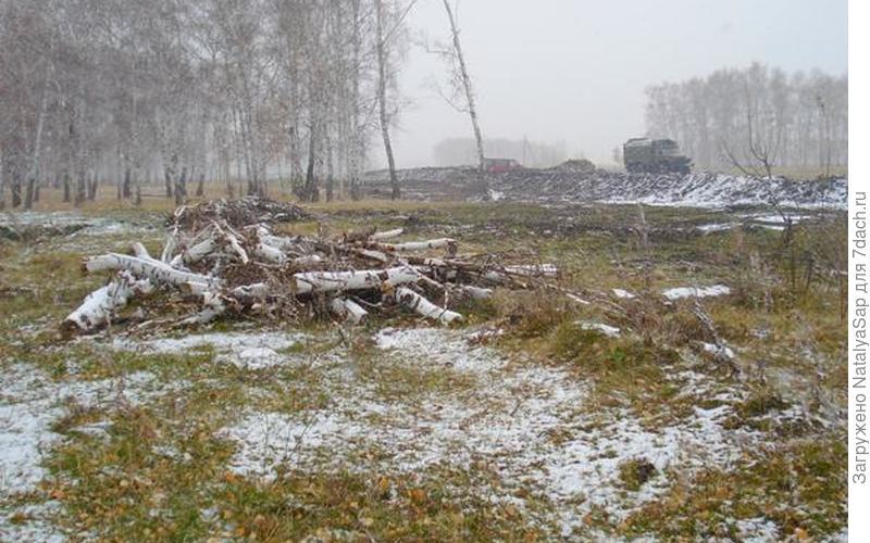 Дрова, как и грибы, необходимо заготовить, чтобы зимой жилось лучше!
