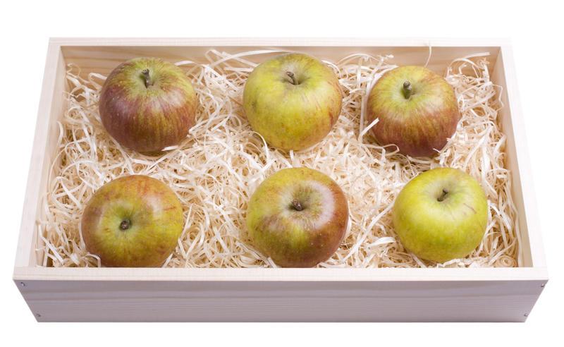 Удобно хранить яблоки, переслоив стружкой или опилками