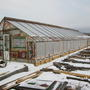 К 2013 году крыша от солнца стала рассыпаться и пришлось покрыть поликарбонатом. В этом году переделал полностью под поликарбонат.