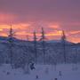 Далекие вершины гор Горят в багровом ярком свете, И рвет заоблачный простор Веселый плут бродяга-ветер.