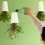 Где разбить домашний огород: подборка идей