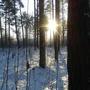 Зимний день короткий.... и не успеешь оглянуться, как солнце уже начинает садиться.
