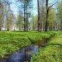 Весенний парк...