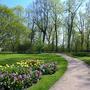Дорога в весну...