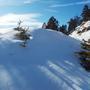 Лучи солнца пробились сквозь снежный сугроб.