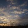 Солнечные облака