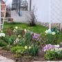 А у нас весна! А у вас?