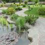 Декоративный пруд с каменной дорожкой