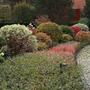 Красиво оформленная садовая дорожка с кустарниками вдоль нее