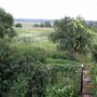 Вид с балкончика мансарды на юг,  на долину реки Угра.