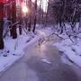 Замерзший ручей и вечернее солнышко))