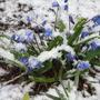 Зима не даром злится.....