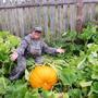 Вот такое чудо огородное выросло у нас! (Прекрасная карета Золушке для парадных выездов получится!)